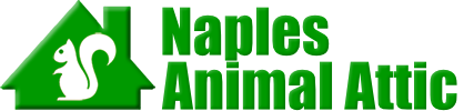 Naples Animal Attic